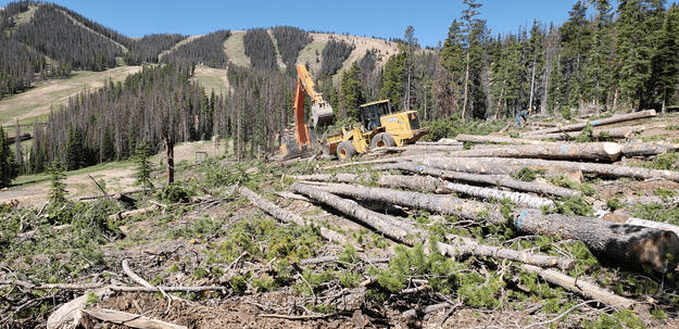 Tubing Park Site Prep