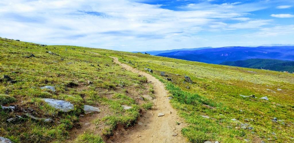 Singletrack trail