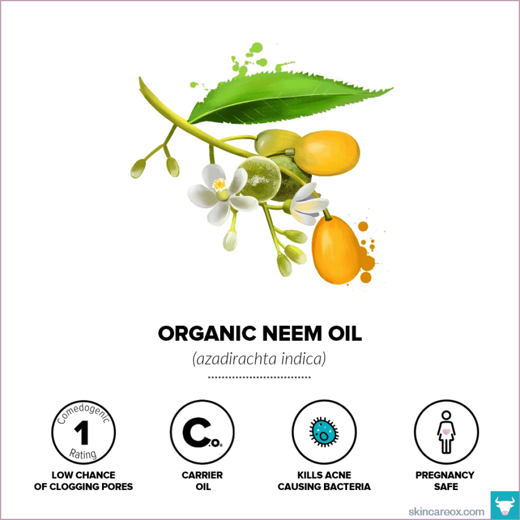 Organic skin care oils. Organic neem oil infographic with comedogenic rating, safety information, and useful tips.