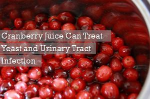 cranberry juice for yeast infection