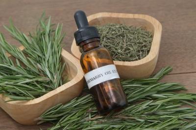 Tea Tree Oil – The Australian First-Aid Kit in a Bottle