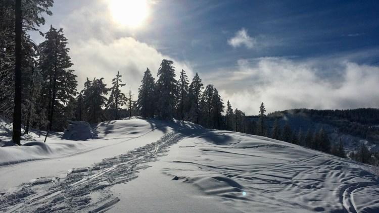 Phoenix Ski Area - Top of Lizard 2018/2019