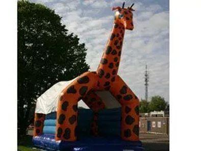 Springkussen Giraffe (overdekt)