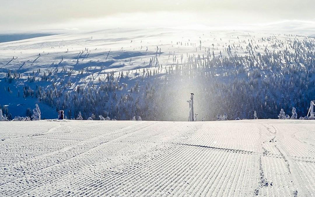 Весенняя лыжная кампания