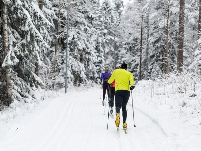Billingen har Sydsveriges længste kunstsnespor