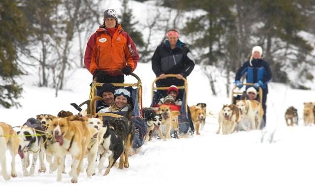 Med hundslæde til skiferien