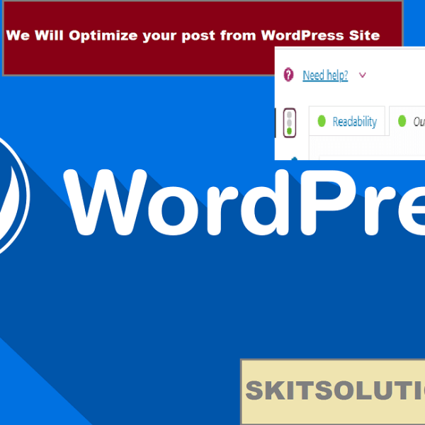 Optimize your post from WordPress