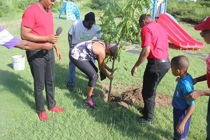 Trees For Our Future Initiative to Combat Climate Change