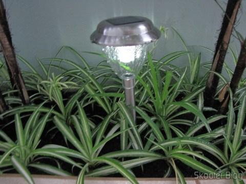 Lâmpada de Jardim de Aço Inoxidável com Luz de LED Branca Auto-Recarregável com Energia Solar (1*AA) (Stainless Steel Solar Powered Self-Recharged LED White Light Lawn Lamp (1*AA)) instalada e em funcionamento à noite. Luz branca na antiga remessa.