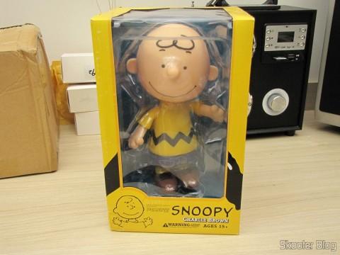 Charlie Brown - Action Figure, em sua embalagem