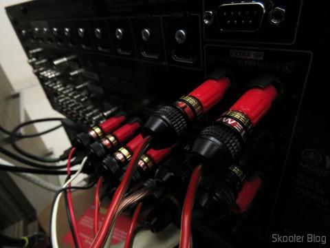 Conexão com os Deadbolt Banana Plugs, 12-pair, By Sewell Direct