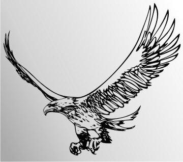 Drachen Delta Kite Adler Mit Schnur Besttoy Online Kaufen