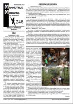 MM nr 246 - kliknij aby pobrać PDF
