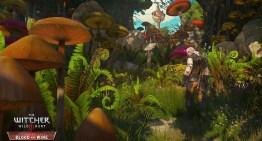 مجموعة صور جديدة من اضافة Blood and Wine للعبة The Witcher 3