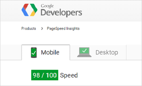 Page Speed Insights1