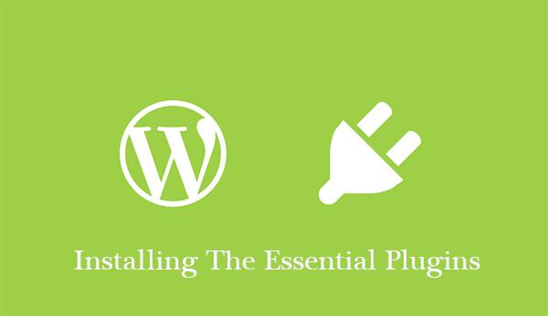 Installing The Essential Plugins
