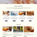 Free Beauty Spa WordPress theme