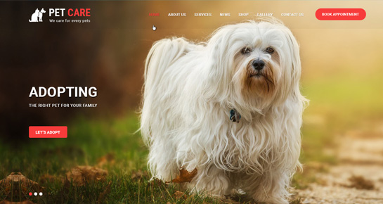 animal wordpress theme