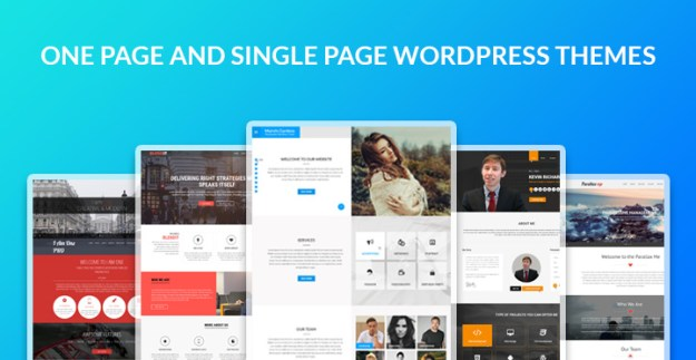 one and single page WordPress theme