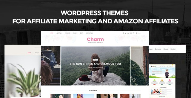 Affiliate Marketing WordPress themes