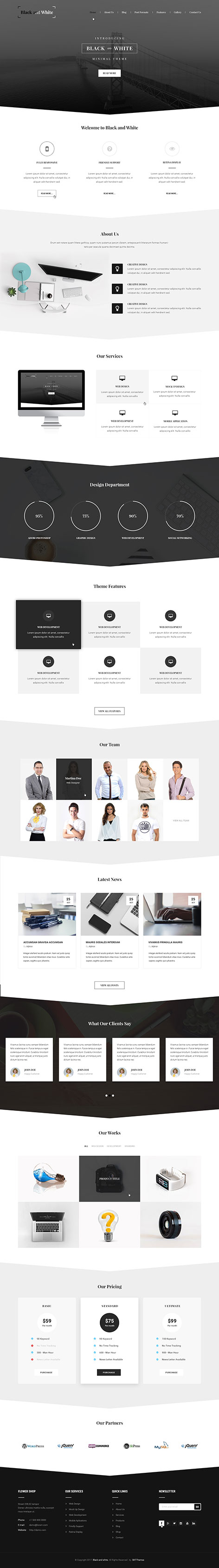 black and white WordPress theme