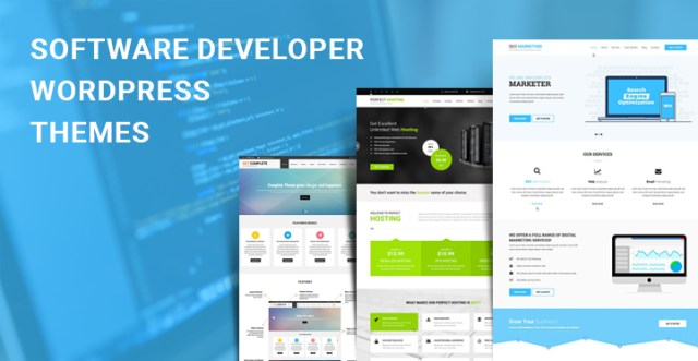 software developer WordPress themes