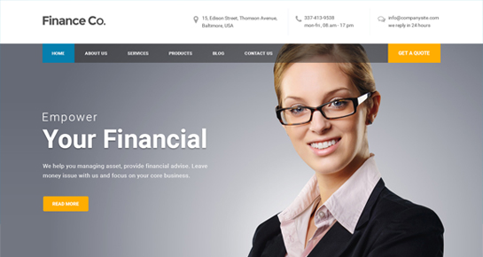Finance WordPress theme