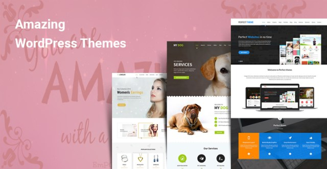 Amazing WordPress Themes