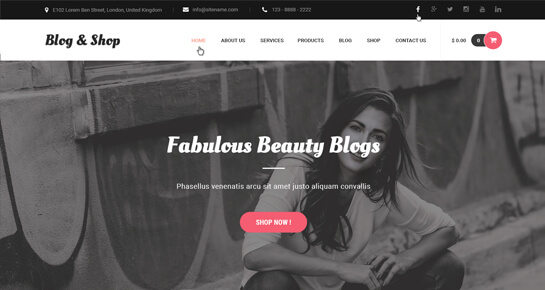 Fashion Blog WordPress theme