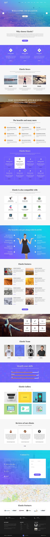 customizable WordPress theme