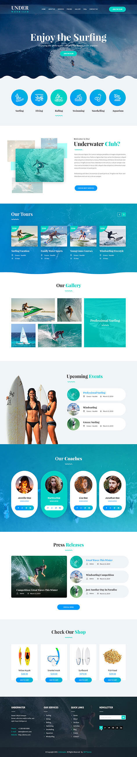 blue WordPress theme