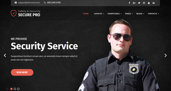 secure security WordPress theme