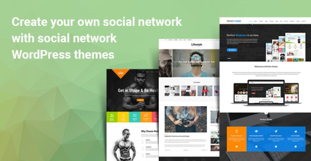 Social network WordPress themes