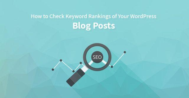 Check Keyword Rankings