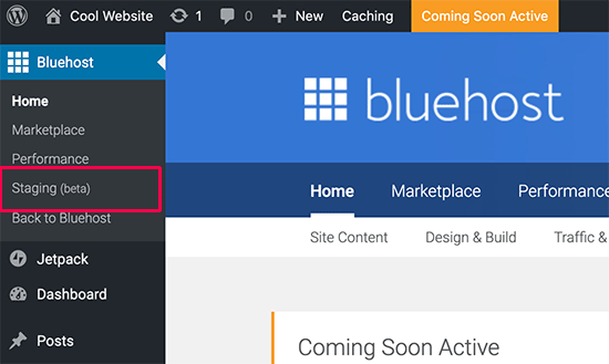 Staging Site Bluehost