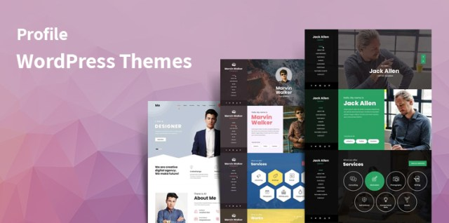 profile WordPress themes