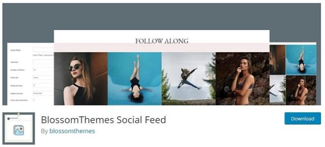 BlossomThemes Social Feed