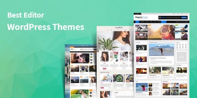 Editor WordPress themes