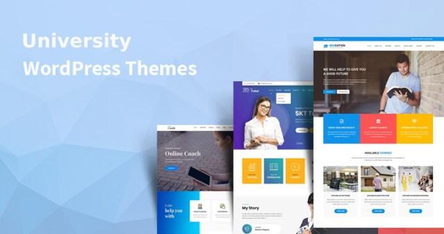 best university WordPress themes