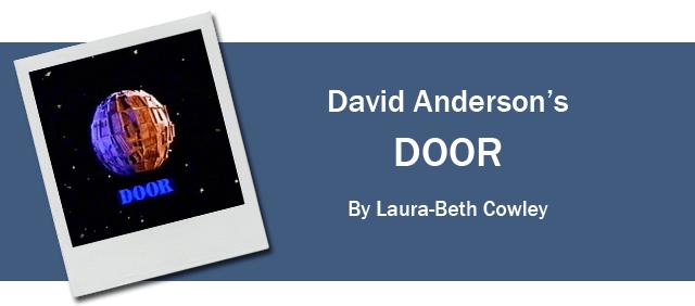 1991 DOOR