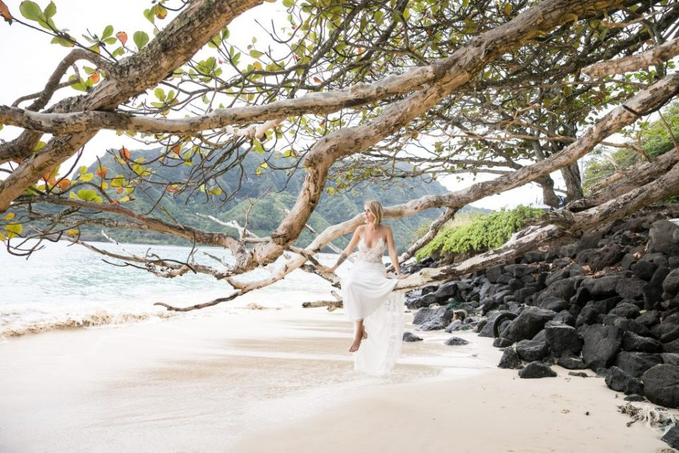 hawaii portrait women sitting in tree overlooking ocean water