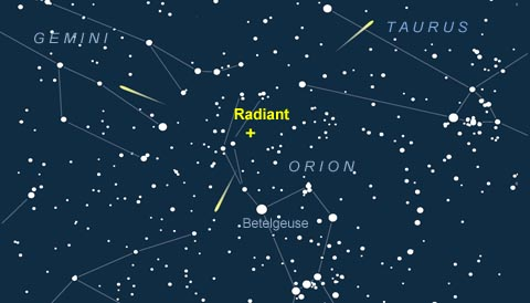 November Orionid meteors