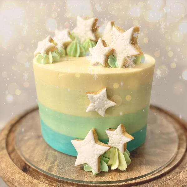Hand made luxury Winter cake