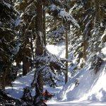 Outer Limits trail Stevens Pass ski area Washington