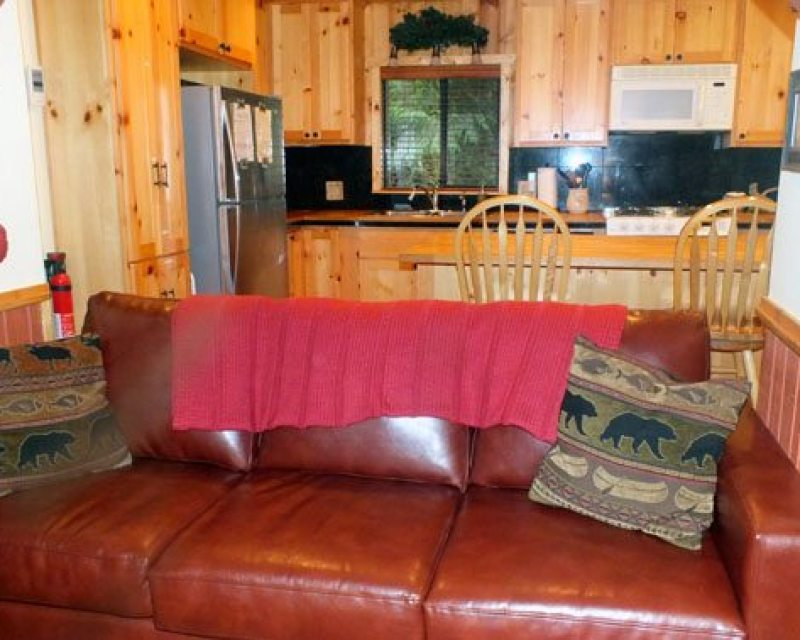 Dog friendly vacation rental Washington state