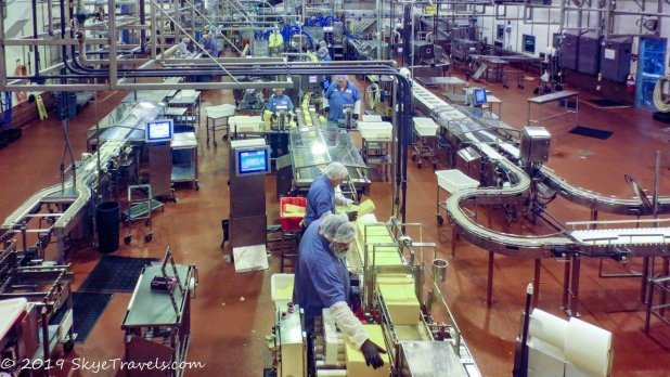 Tilamook Cheese Factory
