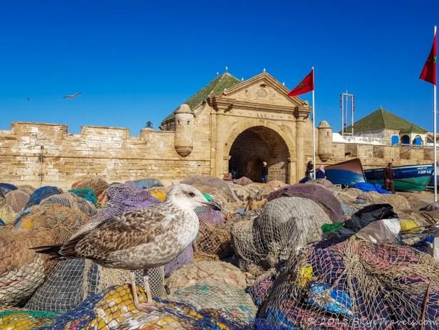 Essaouira Medina Wall
