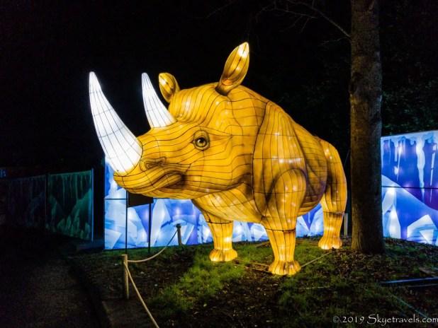 Rhino Lantern