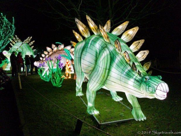Stegosaurus Lantern
