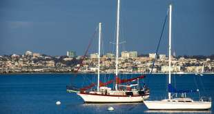 Private Boat Tours in San Diego Are More than Just Whale Watching 12